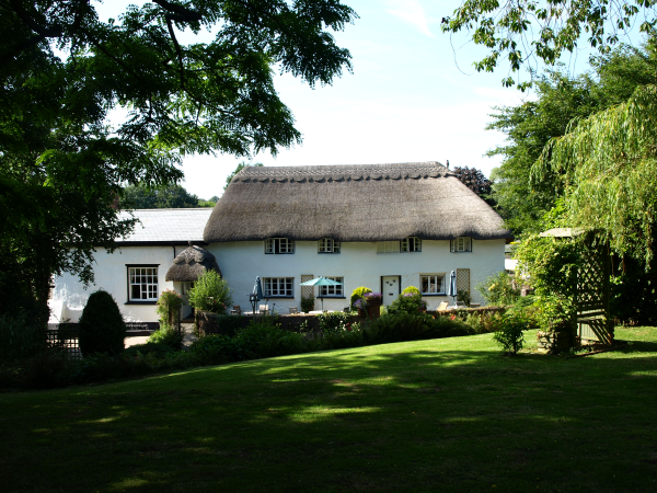Guest House For Sale Sidmouth 01 H269