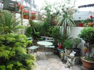 H305 Garden 2
